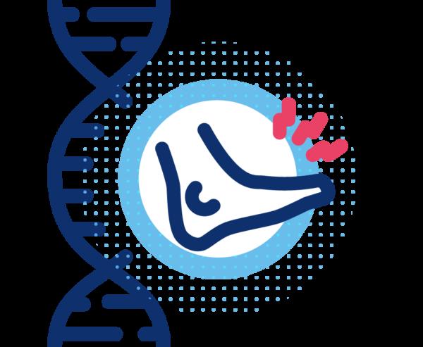 Pruebas Genética Predictiva