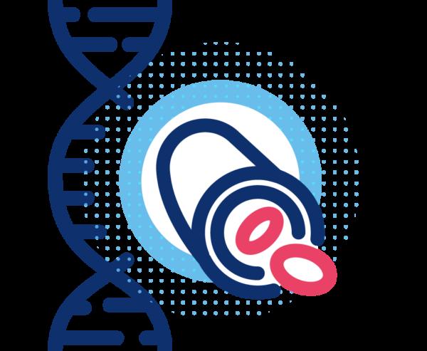 Riesgo genético metabolismo lipídico